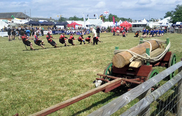 Tug of War at The Devon County Show